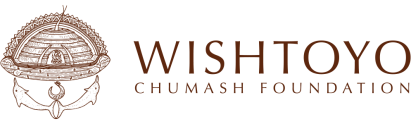 Image result for wishtoyo logo