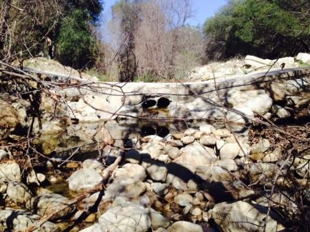 Sisar Creek