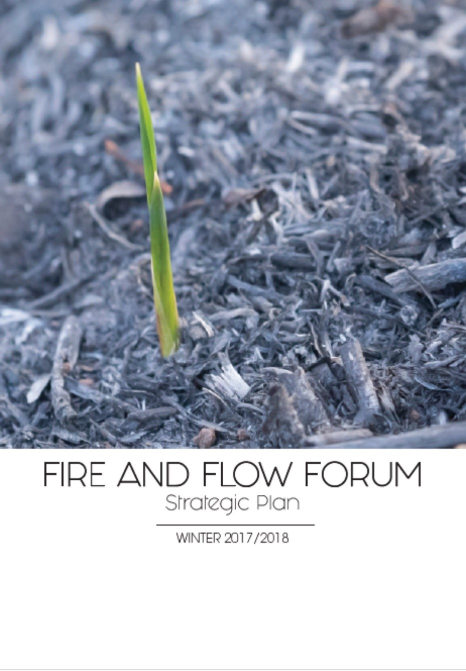 fireandflow
